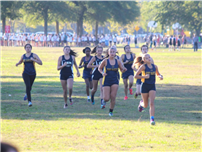 Cross-Country Captures Wins photo